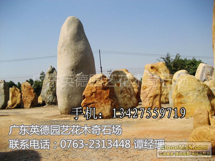 直销大型园林石 景观石 风景石 广场石头